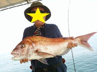 鯛 釣果 20150923