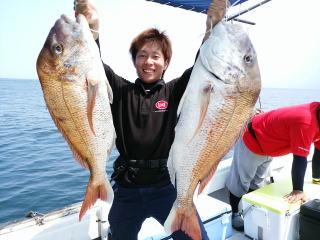 鯛 釣果 20160816